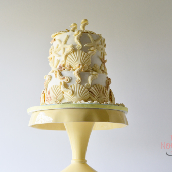 White two-tier seashell cake covered with dozens of white chocolate shells